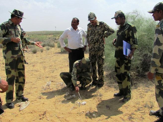 Inspections sur le site où le faucon a été retrouvé.