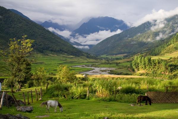 Dans la continuité des vallées himalayennes, l'Arunchal Pradesh cherche les innovations dans le management de l'eau.