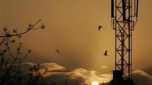 3000 tours de relais pourraient voir le jour dans les régions affectées par la guérilla maoiste.
